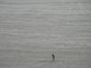SPUTNIK TEAM w zatoczce Petit Port na Guernsey