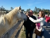 Stadnina białych koni