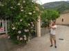Bujna roślinność Majorki