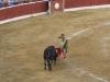 Matador atakuje byka