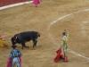 Matador wbija szpadę po rękojeść