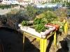 Ogródki rybaków z Alvor