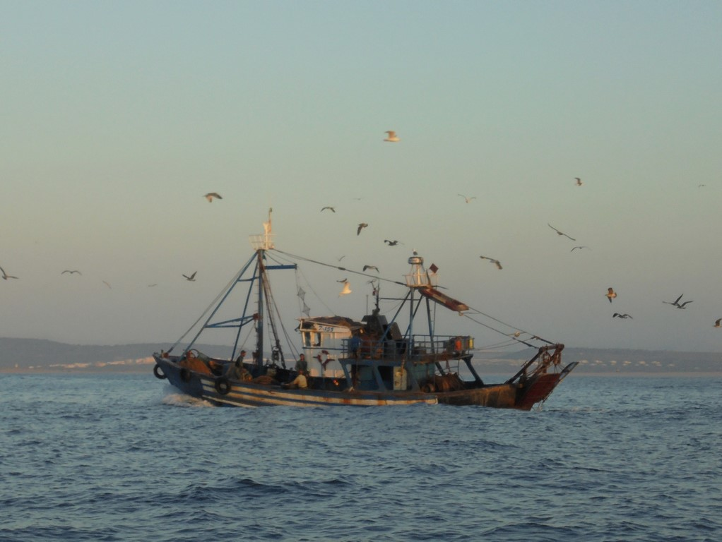 Marokańscy rybacy na morzu