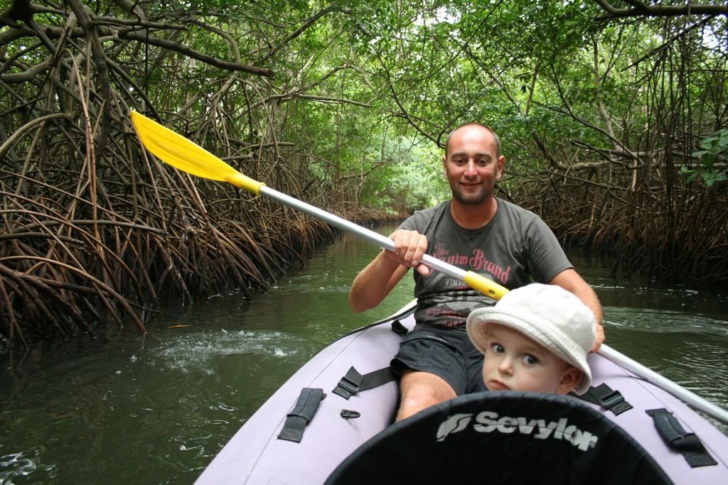 Wycieczka w mangrowiec