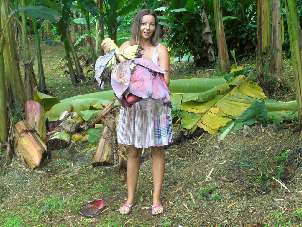 Karolina i kwiatostan bananowca