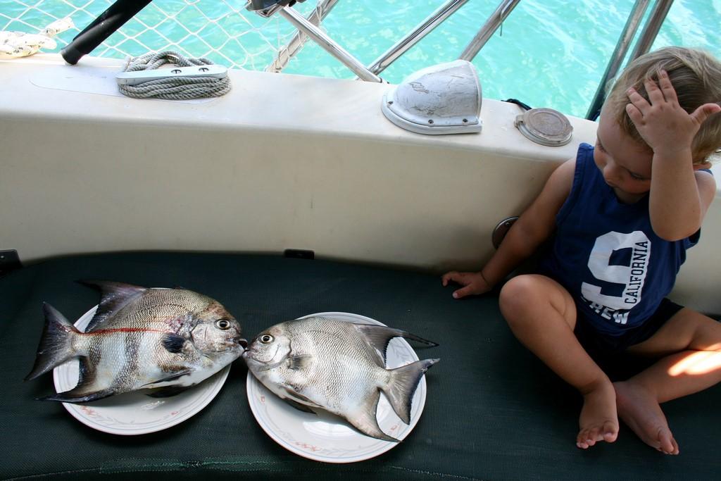 Bruno i szpadelki karaibskie
