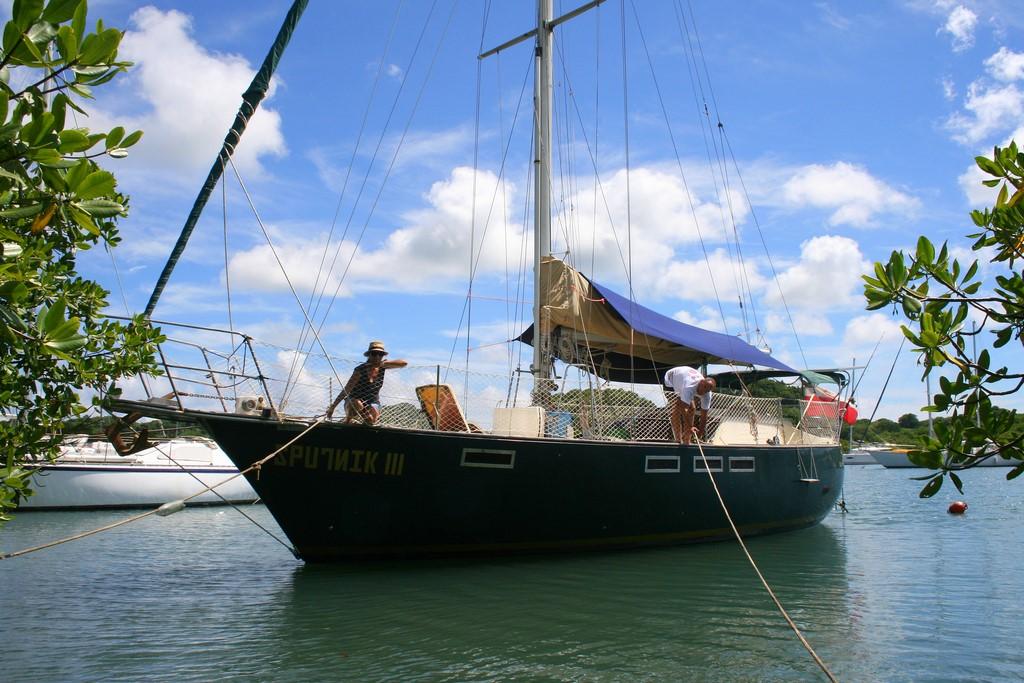 Sputnik III w mangrowcu