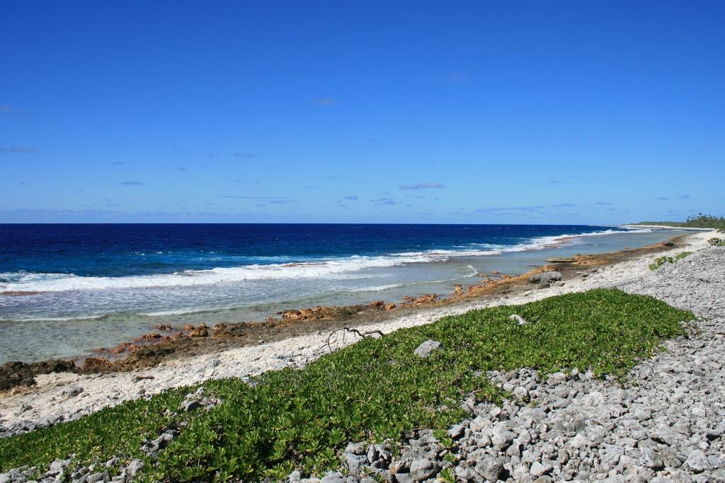 Nawietrzny brzeg atolu Katiu