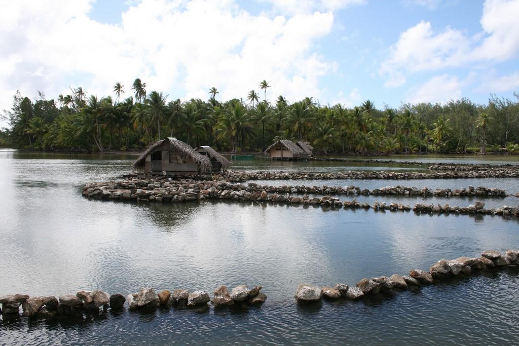 Kamienne pułapki na ryby na Huahine 1