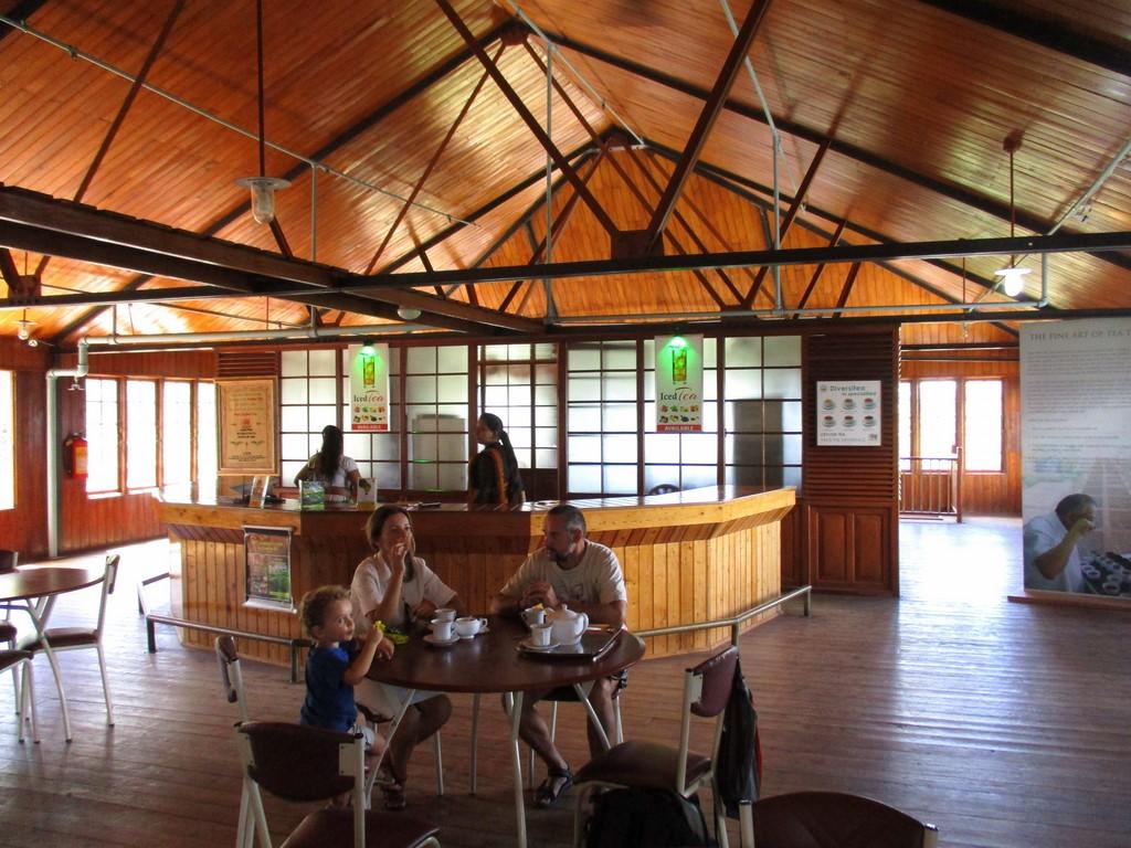 Degustacja w muzeum herbaty w Kandy